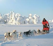 Lapland Adventure